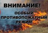 К административной ответственности привлечено 4 нарушителя за нарушение требований особого противопожарного режима