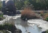Озеро с нечистотами отравляет жизнь жителям Барабинска