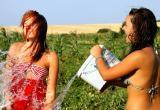 Экстренное предупреждение: аномально жаркая погода ожидается в Куйбышеве и Барабинске