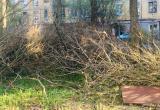Труп женщины нашли возле мусорки в Куйбышеве