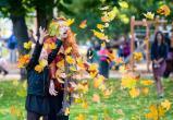Бабье лето наступает в Новосибирской области – погода на 12 и 13 сентября